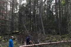 2019-04 Jagarna-4